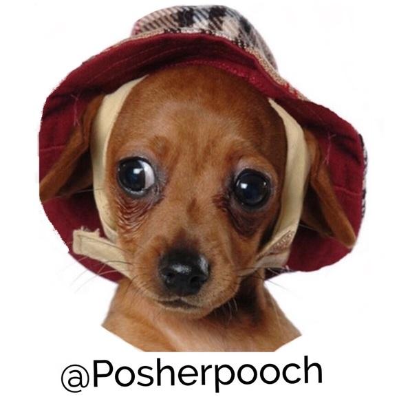 posherpooch